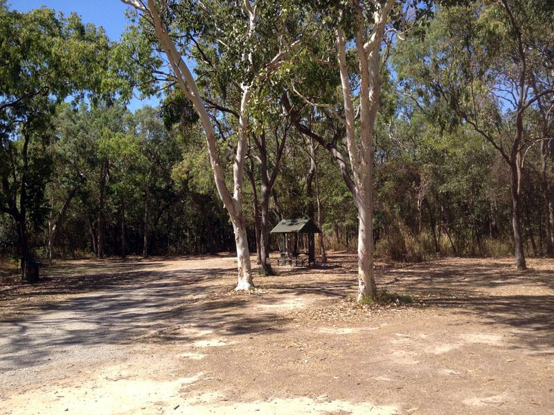 Rifle Creek Rest AreaLarge, level and shady sites, suitable for vans